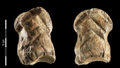 Is This 51,000-Year-Old Deer Bone Carving an Early Example of Neanderthal Art?