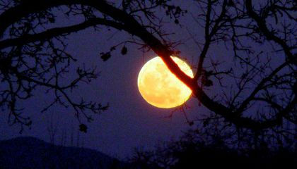 Once in a Blue Moon and Other Idioms That Don't Make Scientific Sense