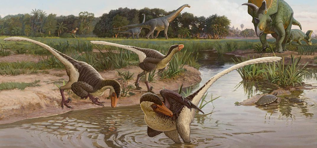 Caption: New Feathered Dinosaur Found in New Mexico