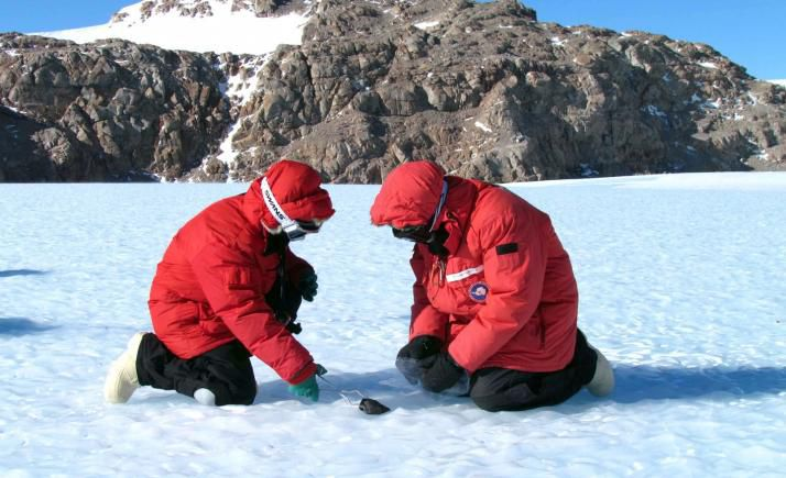 Antarctic meteorites that hail from Mars