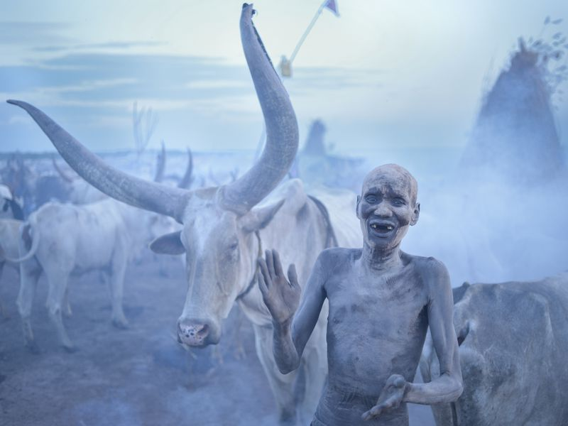 A Dinka tribesman sings to his cattle as the sun sets over his cattle camp next to the Nile river in the Jonglei state of South Sudan. As the sun fell over the camp, fires were lit in order to create smoke to prevent mosquitoes from biting the cows.