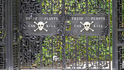Step Inside the World's Most Dangerous Garden (If You Dare)