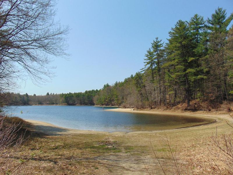 Humans Have Wreaked Havoc on Walden Pond | Smart News | Smithsonian