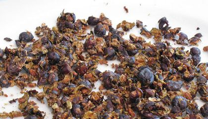 What the Heck Do I Do With Juniper Berries?
