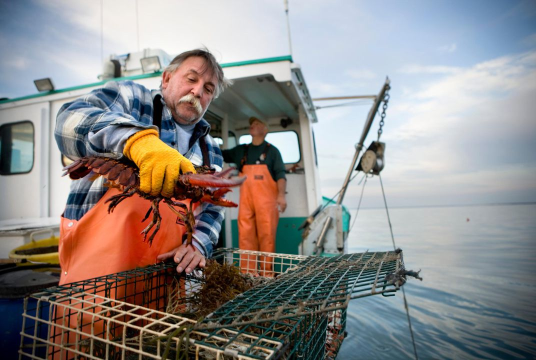 America's in the Midst of a Lobster Boom   Smart News   Smithsonian