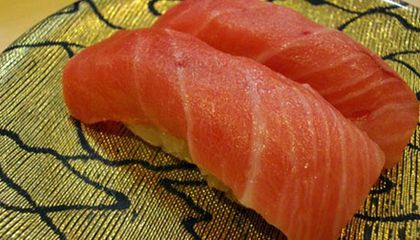 From Cat Food to Sushi Counter: The Strange Rise of the Bluefin Tuna