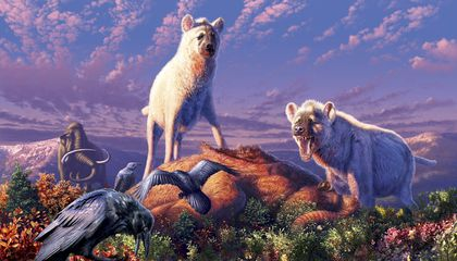 Prehistoric Hyena's Teeth Show Bone-Crushing Carnivore Roamed the Arctic