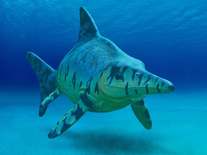 Like Whales and Dolphins, Prehistoric 'Fish Lizards' Kept Warm With Blubber