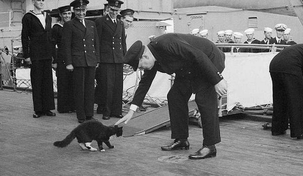 Blackie and Churchill