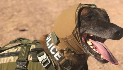 The U.S. Army Is Developing Better Hearing Protection for Its Dogs