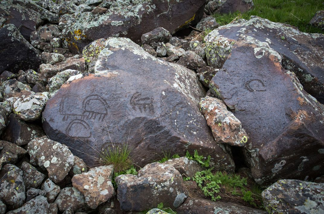 Carved into dark brown, mossy rock are petroglyphs resembling early illustrations of mammals.