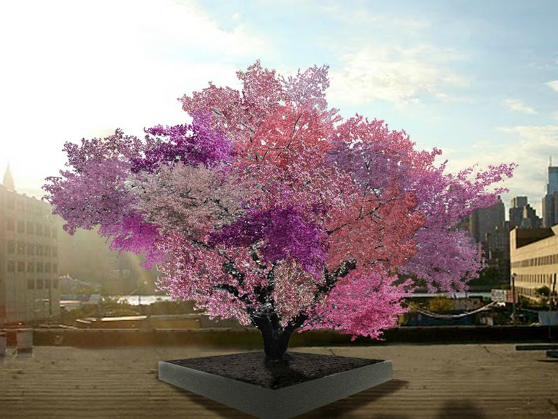 Tree Of 40 Fruit Jpg