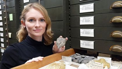 Cole had been using fossils in the National Museum of Natural History's Springer collections for her research long before joining the museum as a curator. (Selina Cole, Smithsonian)