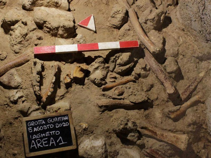 Fossilized Neanderthal remains found in an Italian cave