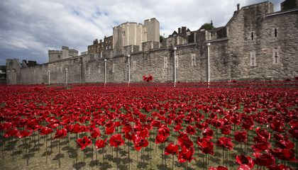 Tower of London Poppies wide shot