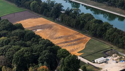 Want to See the New Massive Portrait on the National Mall? Go Up