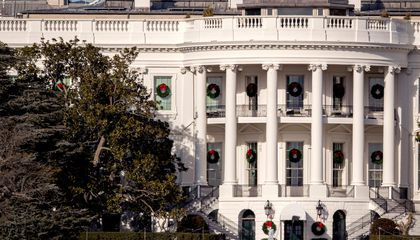 White House Magnolia Tree Planted by Andrew Jackson Will Be Cut Down