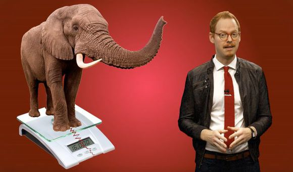 Preview thumbnail for video'Ask Smithsonian: Can Elephants Jump?