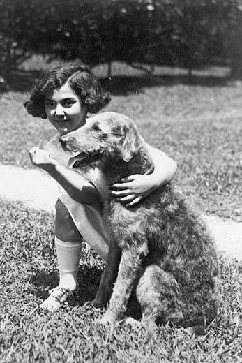 The White House's First Celebrity Dog | History | Smithsonian