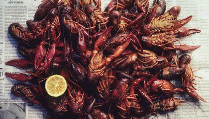 Why Crawfish Are Louisiana's Culinary Gift to the Nation