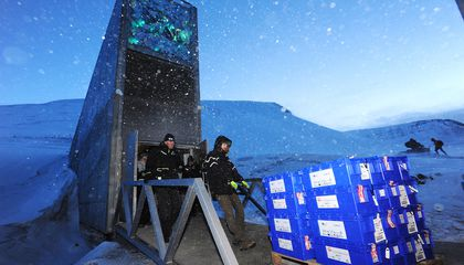 Global Seed Vault Gets Its Millionth Donation and a $13 Million Update