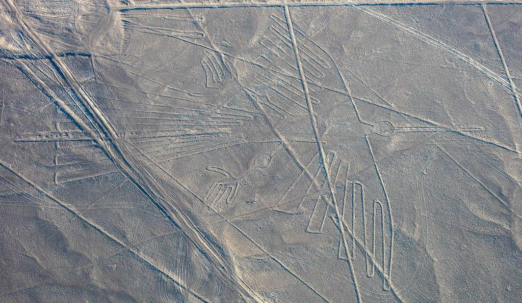Researchers were unable to definitively identify this glyph, commonly classified as a condor