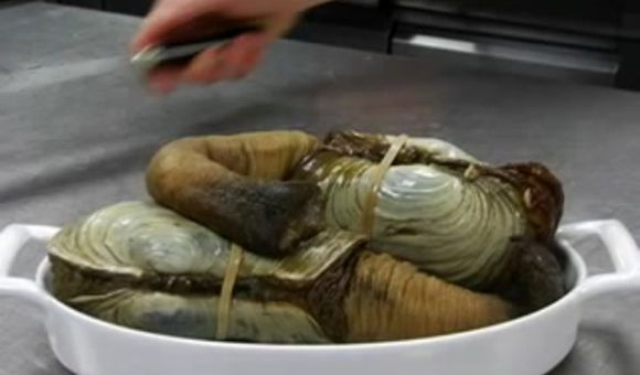 Preview thumbnail for video'Top Chef Shows How to Cook a Geoduck