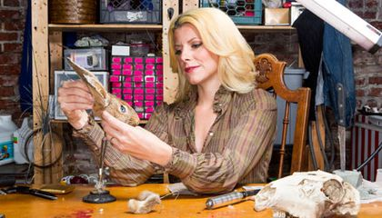 Outrageous Taxidermy, the Subject of a New Show on AMC