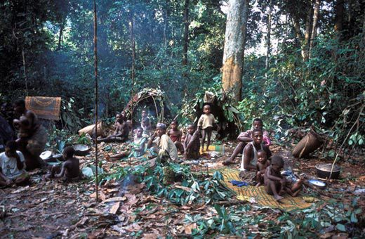 Equatorial Africas Rain Forests Have Sustained Pygmies For Millennia Now Other Peoples Are Competing The Resources Displacing