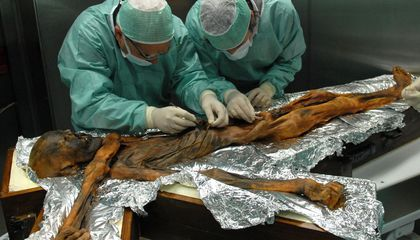Before He Died, Ötzi the Iceman Ate a Greasy, Fatty Meal