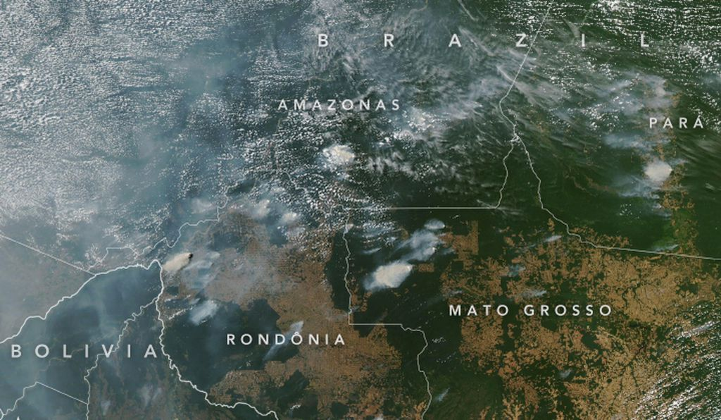 The Amazonian fires are so large that they can be seen from space