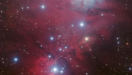 Picture of the Week—Christmas Tree Cluster