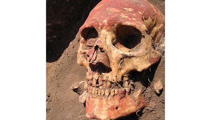 Plague Was Infecting Humans 3,300 Years Earlier Than Thought