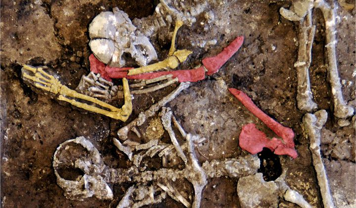 Neolithic Grave Holds Nine Murdered 'Outsiders'