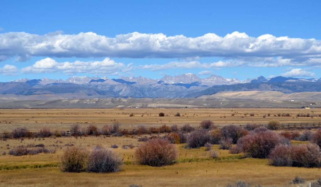 Wide open prairie like this is essential habitat for the sage-grouse.
