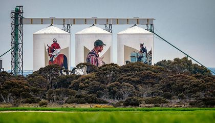 See How Artists Have Turned Farm Silos Into Stunning Giant Murals