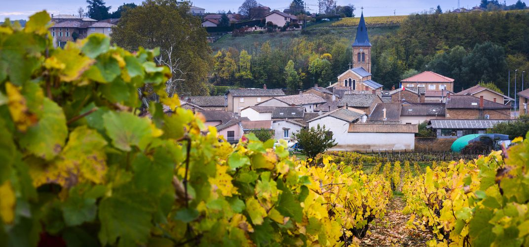 Village and vineyard in Beaujolais region