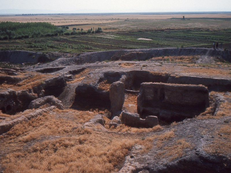 Ancient Proteins From Unwashed Dishes Reveal the Diets of a Lost Civilization