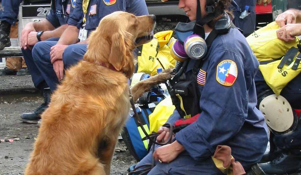 Denise Corliss and Bretagne on the scene of the 2001 World Trade Center collaspe