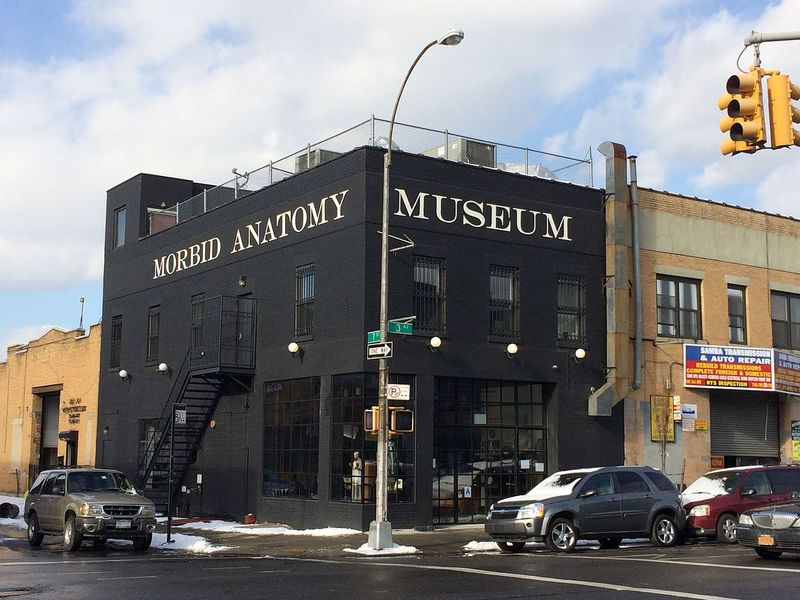 Morbid Anatomy Museum Closes Its Doors | Smart News Arts & Culture ...