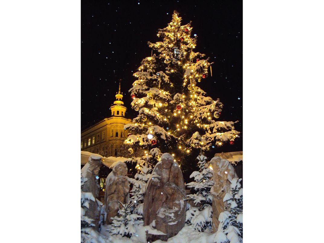 Towering Christmas tree lit up, behind snow-covered angel statues.