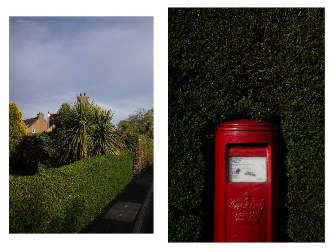 Palm, and mailbox