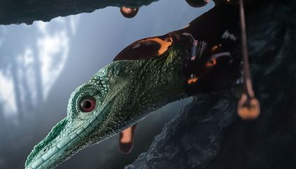 World's 'Smallest Dinosaur' Revealed to Be a Mystery Reptile