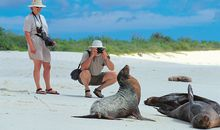 Wonders of the Galápagos Islands Voyage description