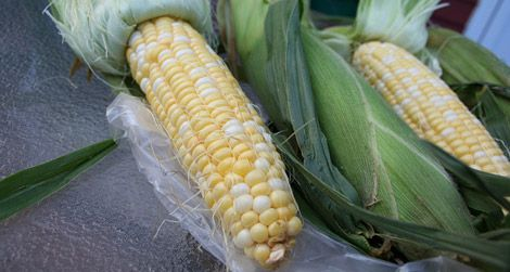 What to do with the corn from your local market?