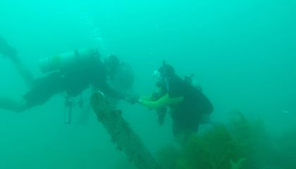 Divers Turn to Robots for Help Scouring the Pacific for Long-Lost WWII Soldiers