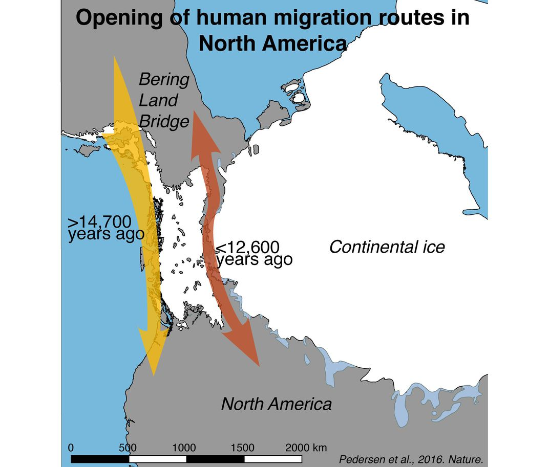 First Humans Entered the Americas Along the Coast, Not
