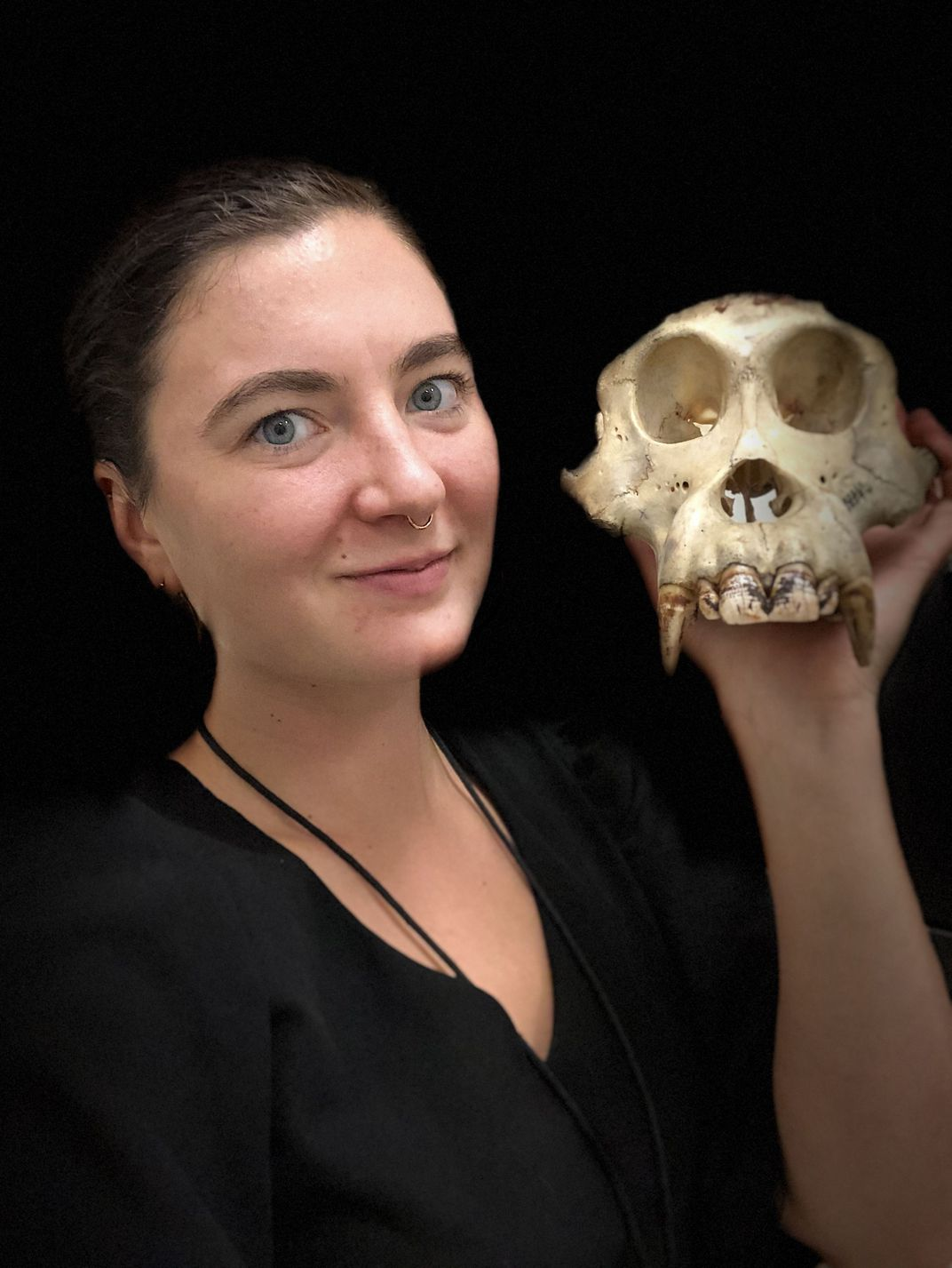 A person holds a great ape skull next to their head.