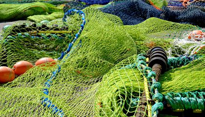 Global Fishing Fleets Waste Ten Percent of Catch