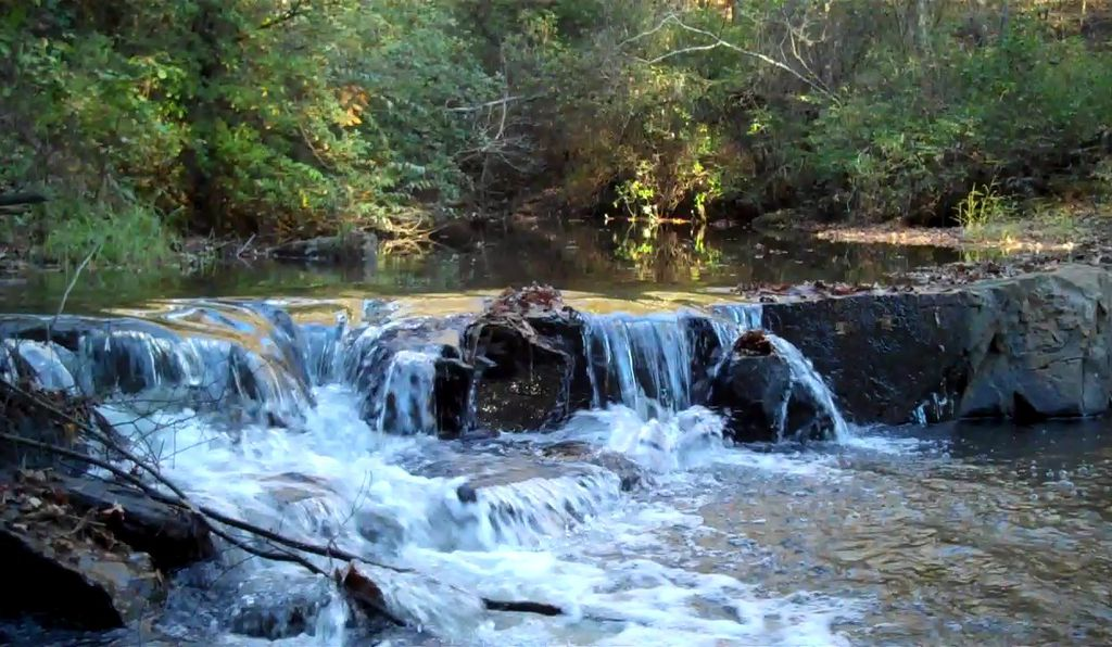 Ramsey Creek Preserve claims to be the first